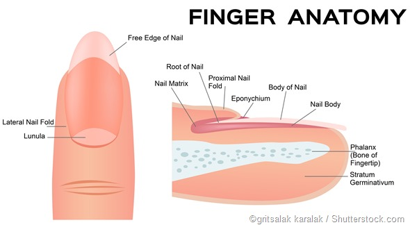 proximal nail fold problems