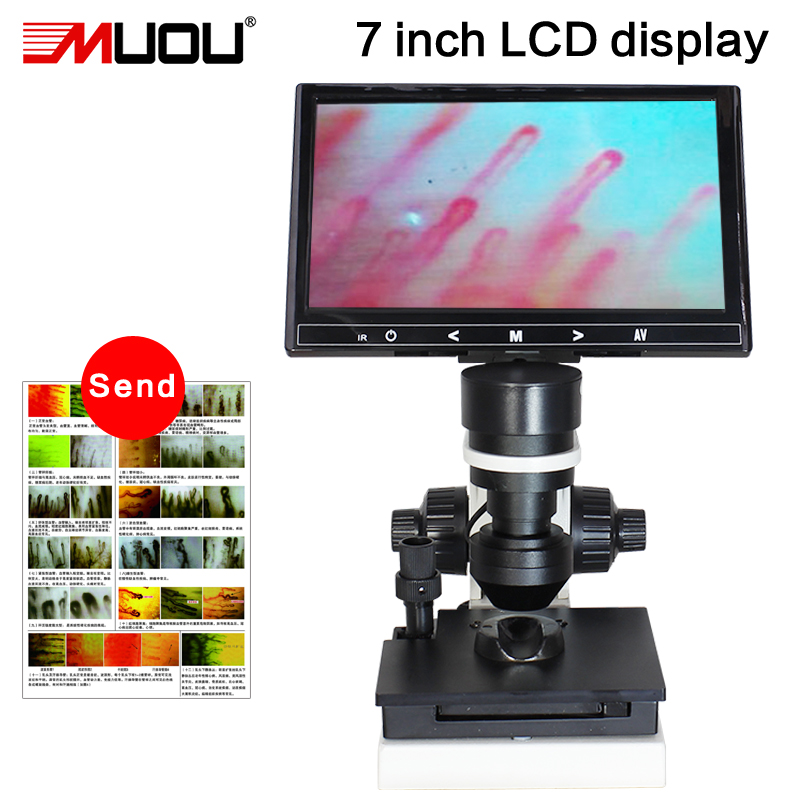 Nailfold microscopy