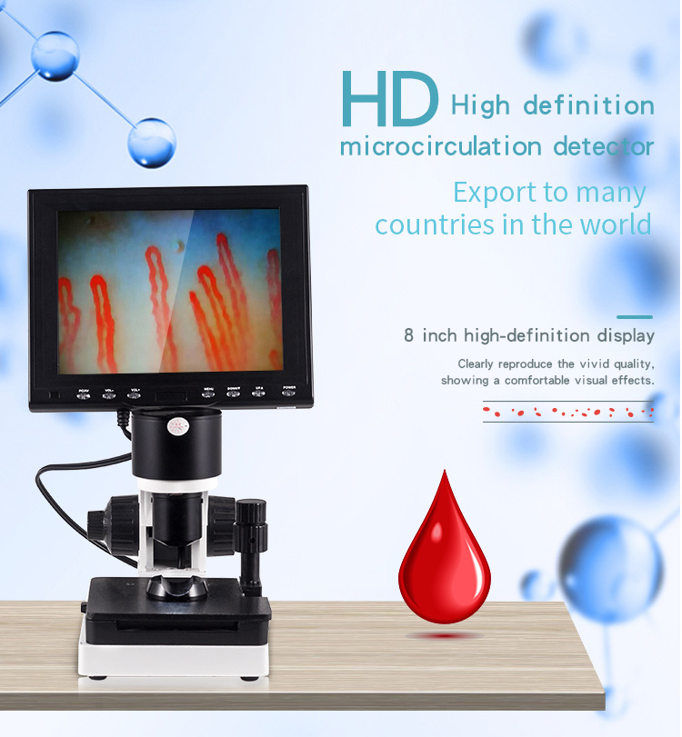 video microscopy microcirculation